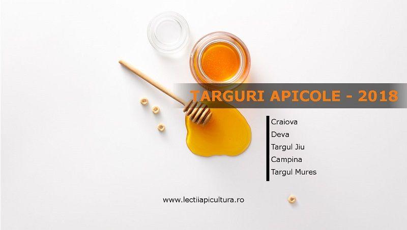 targuri apicole