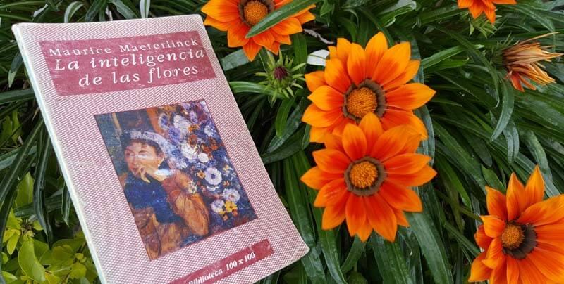 Libro La inteligencia de las flores - por Maurice Maeterlinck