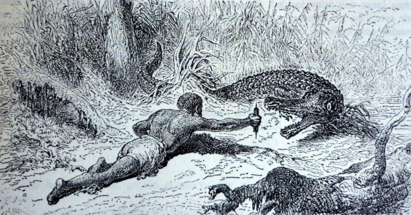 caza del caiman