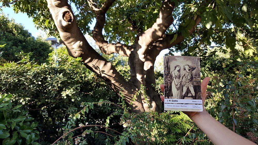 Las Penas del joven Werther, obra en forma de cartas, primera novela del joven Goethe