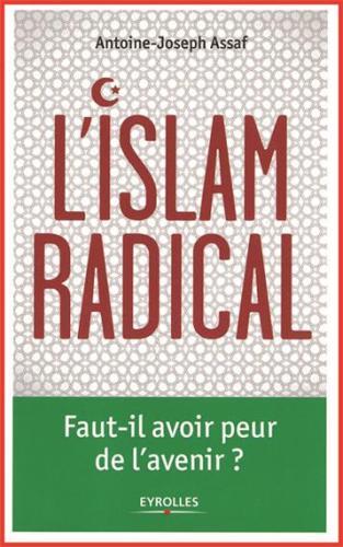 L'islam radical. Faut-il avoir peur de l´avenir ?