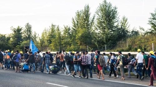 Immigration, la catastrophe. Que faire ? (1/3) Le choc des faits