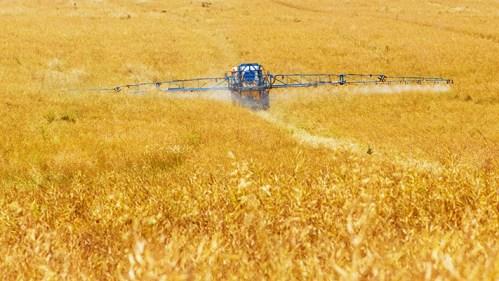 L'intérêt de la Chine pour les pesticides