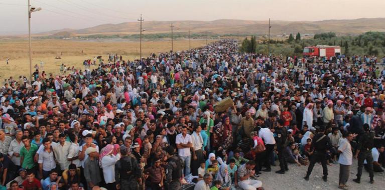Réflexions sur l'immigration et la démographie