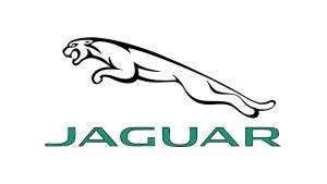 Lampi Numar Led Jaguar OEM