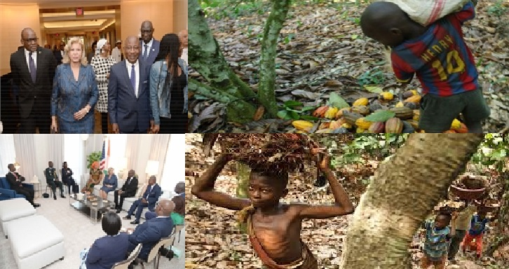 cacao Dominique Ouattara LEDEBATIVOIRIEN.NET