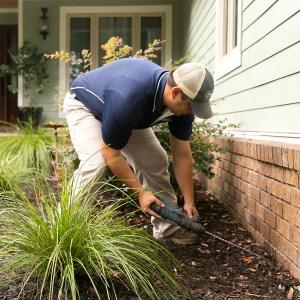 Ledford's Pest Control Services