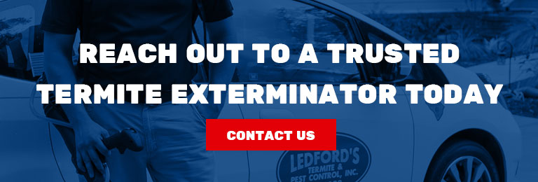 Professional Termite Exterminator in Charleston CTA