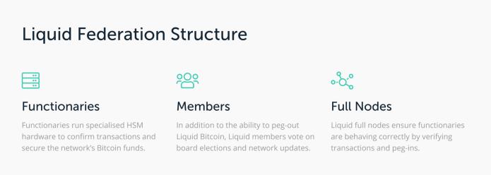 estructura liquida