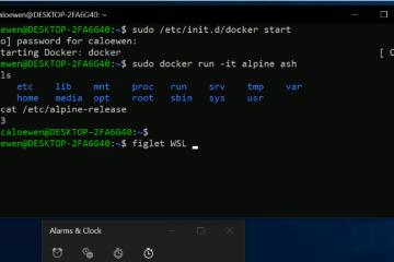 Windows Subsystem for Linux V2