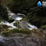 La comunità dell'acqua diviene un network riconoscibile per affrontare le sfide del futuro