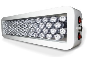 Cheap LED Grow Lights
