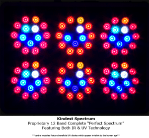 KIND LED Grow Lights review