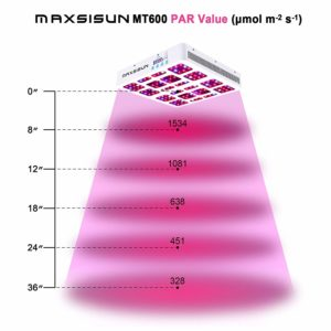 MAXSISUN Review - MT600 Timer Control 600W (Full Spectrum) - LED Grow Light Review