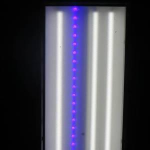 Mold Remediation Blue Light