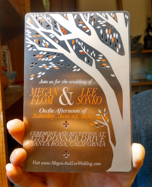 The Wedding of Megan Flom and Lee Sonko