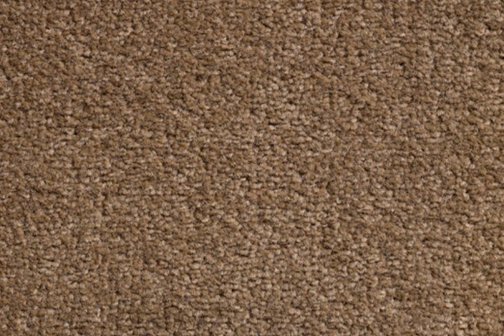 WEMBLEY-Taupe