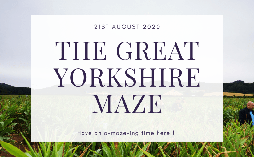 Great Yorkshire Maze splash image