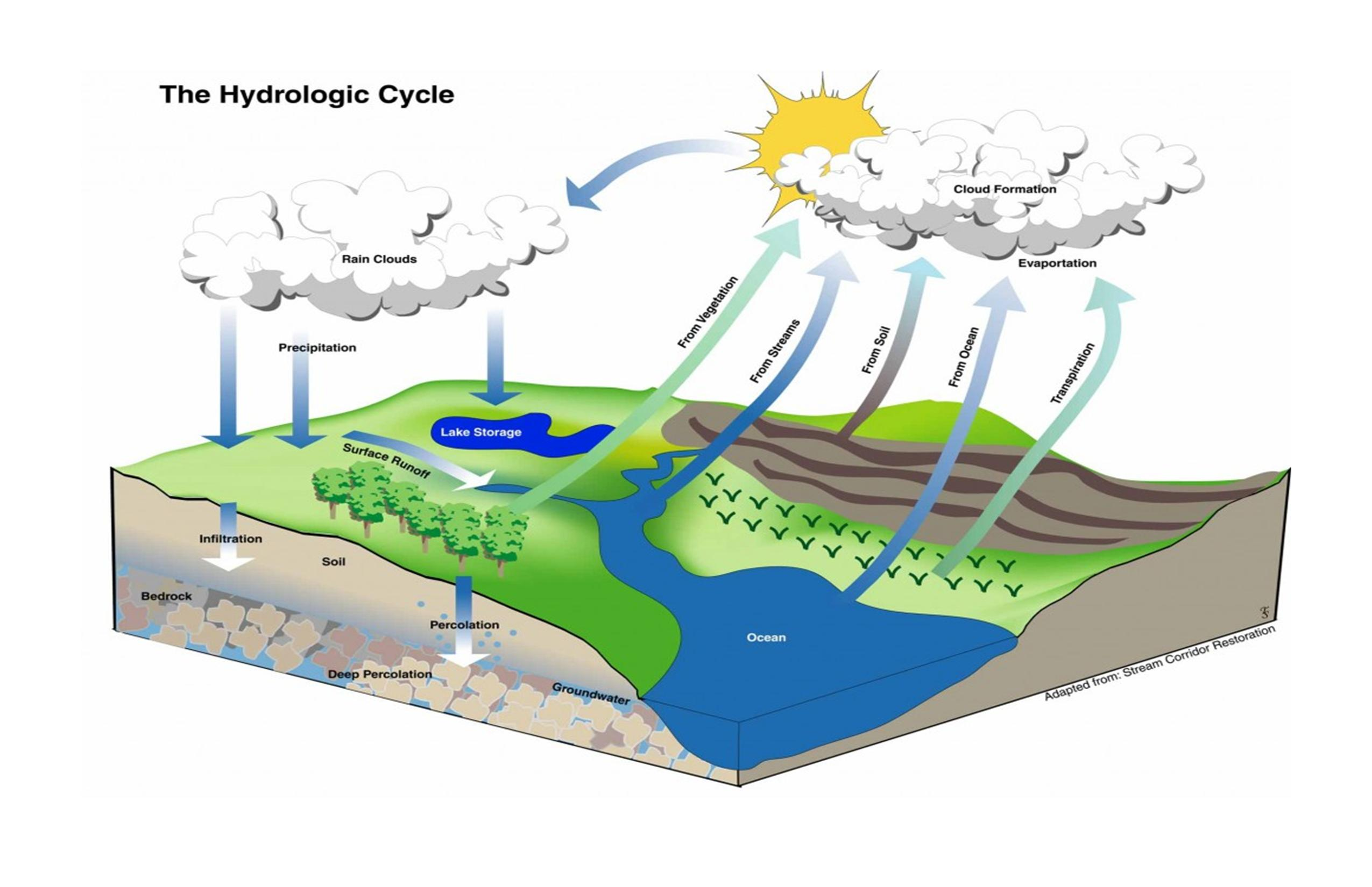 What Is A Watershed Basin