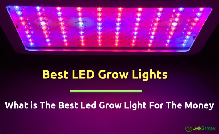 Top Led Grow Lights 2017