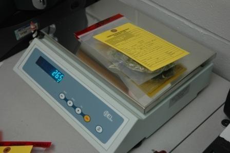 weighing-evidence.jpg