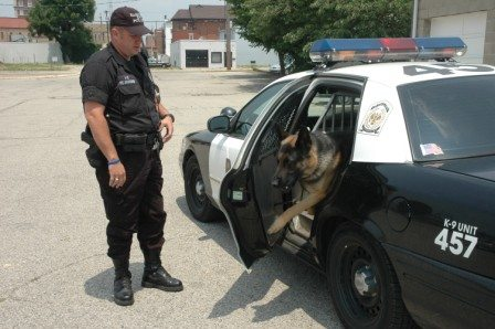 Viper the drug dog dies