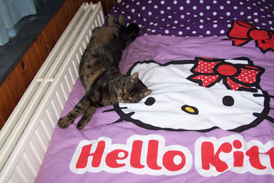 Joey verliefd op Hello Kitty