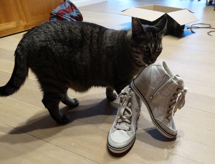 schoenen01