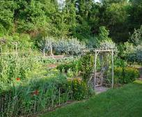 north vegetable garden from the south