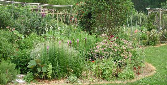Perennial Bed
