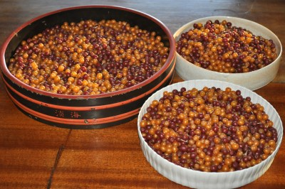 autumn olive fruits in bowl