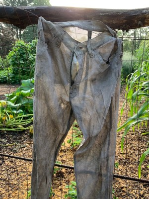 Partially composted Levi jeans