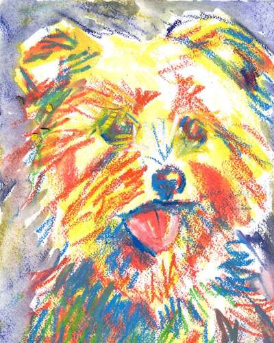 Yorkie Terrier dog portrait in watercolor and professional art ink sticks on arches watercolor paper
