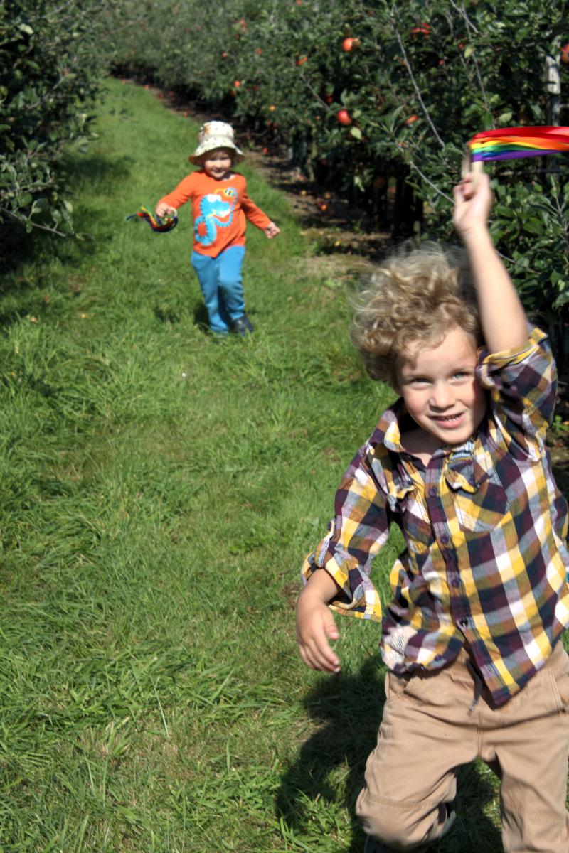 regenboog-handvlieger-leesvoer-appelplukdag-5-of-8