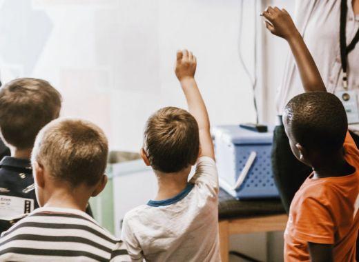 Comité vert dans les écoles du Québec