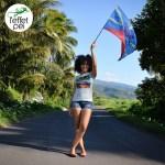 Drapeau de la Réunion - Réunion Island Flag ! Représent' 974