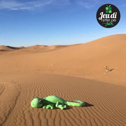 Le margouillat L'effet Péi en plein désert