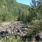 Sentier Péi - Direction Roche Plate - île de la Réunion
