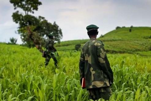 Une patrouille des rebelles du M23 autour de Kavamu Hill au Nord-Kivu.