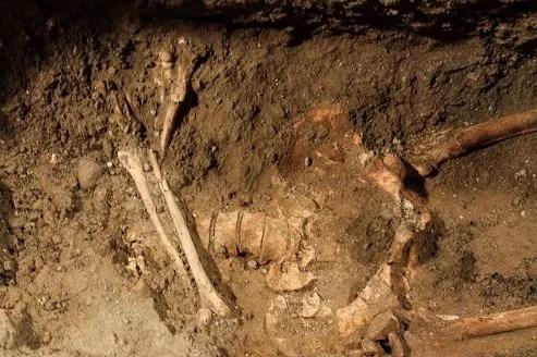 Le squelette de Lisa Gherardini, l'hypothétique modèle de Léonard de Vinci pour la Joconde .