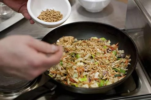 Le chef néerlandais Johan van Dongen prépare un plat avec des vers de farine.