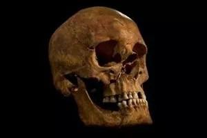 Le crâne de Richard III, retrouvé en 2012 à Leicester.