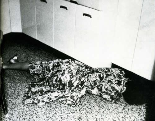 Risultati immagini per il caso fenaroli