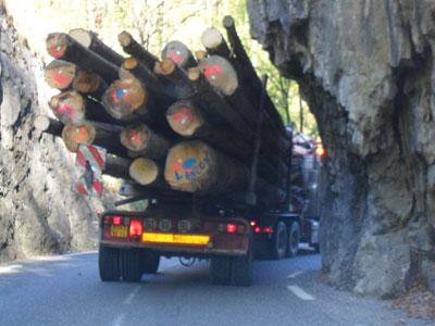 Big log truck on narrow winding road