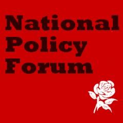 NPF report