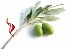 An olive branch from Unite