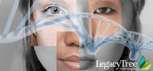 ethnicity estimates