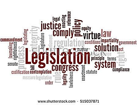 Legislation-and-its-types-concentrate