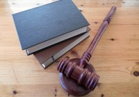 Negligence in The Sphere of Civil Law