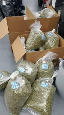 Buy Marijuana Online USA, Buy Cannabis Online USA, Buy Weed Online USA, Buy 420 Online USA, Buy Ganja Online USA, Order Marijuana Online USA